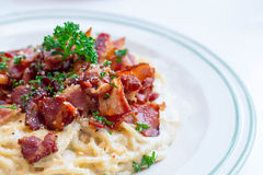 Dish of Italian spaghetti carbonara sauce with bacon. Dish of Italian spaghetti carbonara sauce with bacon and cheese on white table Royalty Free Stock Photos