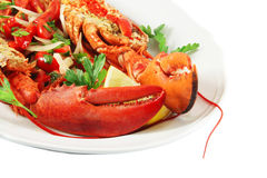 Dish with lobster Stock Image