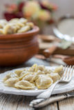 Dish with meat dumplings. Stock Photography