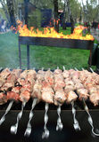 Dish of meat skewers. Cooking on an open fire is a traditional dish of meat Skewers Stock Photos