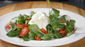 Dish with mozzarella and greenery on white plate. Healthy food and vegetarian concept. Close-up shot of chef pouring stock video