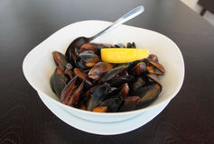 A of a dish of mussels Stock Photography