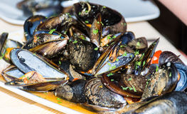 A dish of  mussels pics with tomato sauce, open. Royalty Free Stock Images