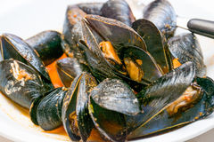 A dish of  mussels pics with tomato sauce, open. Stock Images