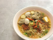 A dish of noodle bowl Royalty Free Stock Image