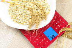 Dish of oatmeal on electronic kitchen scales Stock Images