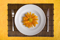 Dish with orange flower on bamboo board. White dish with flower on bamboo board with yellow background Stock Image