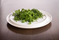 Dish with parsley and fennel Stock Image