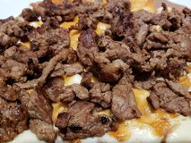 dish with pieces of cooked beef and melted cheese for tacos royalty free stock photography