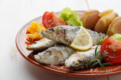 Dish of portuguese sardines on a table Stock Photography
