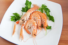Dish with prawn and shrimps Stock Photo
