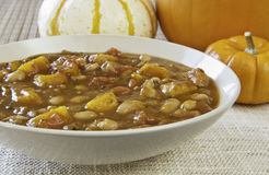 Dish of Pumpkin Stew Royalty Free Stock Images