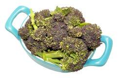 Dish Of Purple Headed Broccoli. Fresh raw purple headed broccoli in a blue dish isolated on a white background Stock Photography
