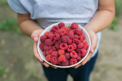 A dish with a raspberries in a child hands Stock Photo