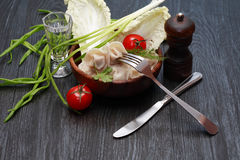 Dish With Ravioli stock photography