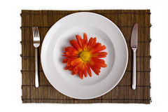 Dish with red flower on bamboo board isolated Stock Images