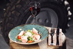 Dish and red vine Stock Images