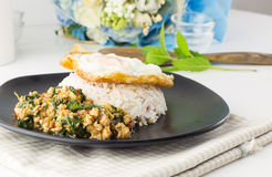 Dish of rice - egg and stir fried chiicken with basil Royalty Free Stock Photo