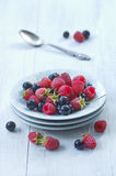 Dish with ripe raspberry and black currant Royalty Free Stock Images