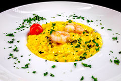 Dish with risotto, shrimp and tomato. stock images