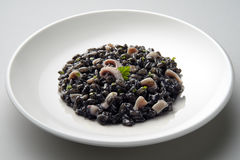 Dish of risotto with squid ink. Isolated on grey plane stock images