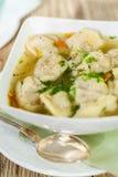 Dish of savory pork tortellini in broth pelmeni russian Stock Images