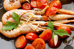 Dish with scampi and tomatoes Royalty Free Stock Images