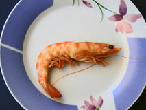 Dish with shrimp. Dish with cooked shrimp Royalty Free Stock Photography