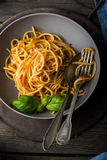A dish of simple spaghetti with tomato sauce and basil Royalty Free Stock Images