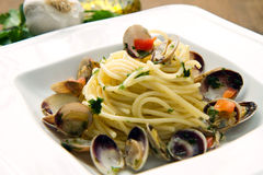 Dish of spaghetti with clams Stock Photography