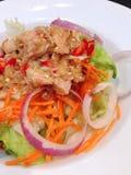 Dish of spicy salad with tuna Stock Photos