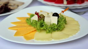 Dish from a variety of cheeses.Cheese appetizer. Dish from a variety of cheeses.Cheese appetizer, sliced cheese, healthy food, natural product stock footage