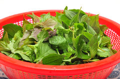 Dish of Vietnamese herbs Stock Photography