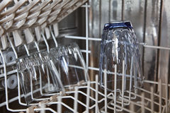 Dish washer with clean gassware Royalty Free Stock Photography