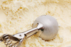 Disher del gelato in gelato alla vaniglia Fotografia Stock Libera da Diritti