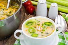 Dishes from fish. Soup with salmon and cream. Studio Photo Royalty Free Stock Photo