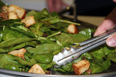 Dishing Up A Green Salad. Dishing up a vinnaigrette green salad with croutons Royalty Free Stock Image