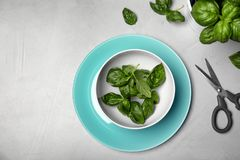 Dishware with fresh basil leaves and scissors on table. Top view stock photos