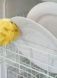 Dishwashing Stock Photography