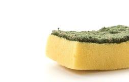 Dishwashing sponge Stock Image