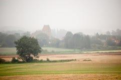 Disig morgon med träd och en kyrka royaltyfri bild