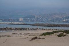 Disig sommarmorgon på kusten Arkivbild