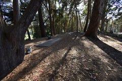 Disketten-Golf bei Golden Gate Park, 1 stockbild