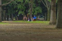 Diskussion an Yoyogi-Park stockfoto