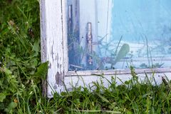 Dismantled old wooden windows drawn up on green grass near the house. Dismantled old wooden windows with glass on the green grass. close-up royalty free stock photo