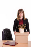 Dismissed girl in office to collect things a box Royalty Free Stock Photos