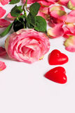 The dismissed rose with the scattered petals. The rose with the scattered petals with red candles in the form of heart Royalty Free Stock Photography