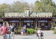 Disney Animal Kingdom Stock Photo