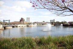 Disney balza lago Immagine Stock