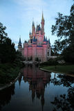 Disney castle reflection Stock Photo